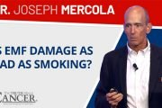 ttac live event excerpt with joseph mercola