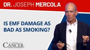Is EMF Damage as Bad as Smoking? (video)