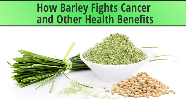 barley health benefits for cancer