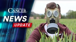 Communities Worldwide Move to Ban Glyphosate for Good