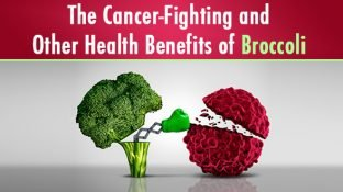 Cancer-Fighting and Other Health Benefits of Broccoli