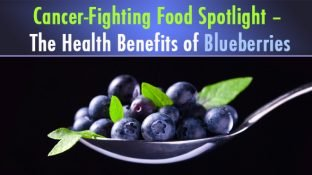 Cancer-Fighting Food Spotlight – The Health Benefits of Blueberries