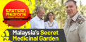 Nature's Medicine Chest: An Inside Look at...