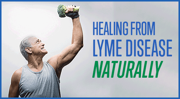 lyme disease natural treatment