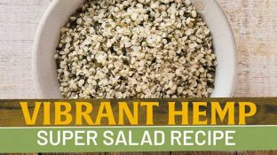 Vibrant Hemp Super Salad Recipe