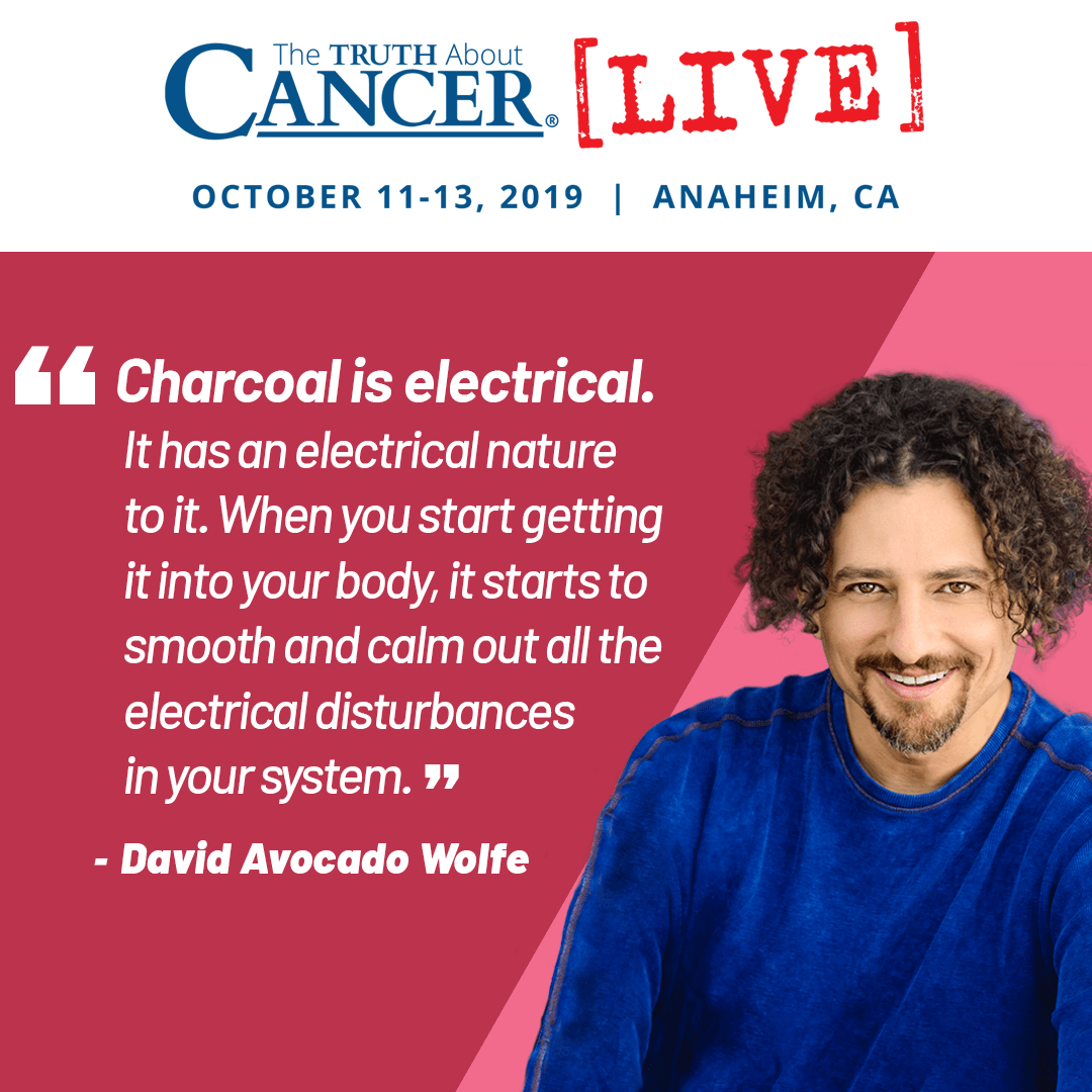 David Wolfe - What is Activated Charcoal?