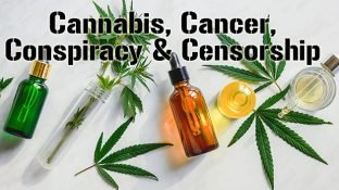 Cannabis & Cancer ... Censorship & Conspiracy