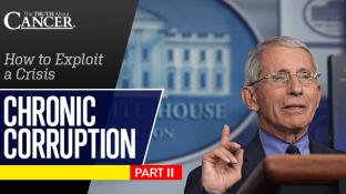 Chronic Corruption Part II: How to Exploit a Crisis