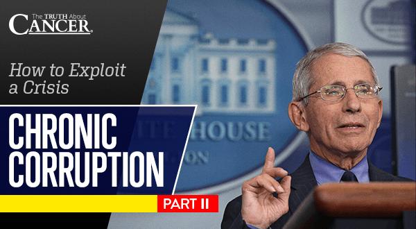 Chronic Corruption Part 2