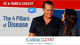 The 4 Pillars of Disease (Part 1)