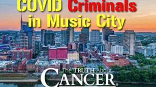COVID Criminals in Music City
