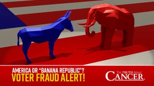 "America or ""Banana Republic""? Voter Fraud ALERT! The USA is under attack!"