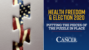 Health Freedom & Election 2020 (Putting the Pieces of the Puzzle in Place)
