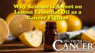 Why Science is Sweet on Lemon Essential Oil as a Cancer Fighter