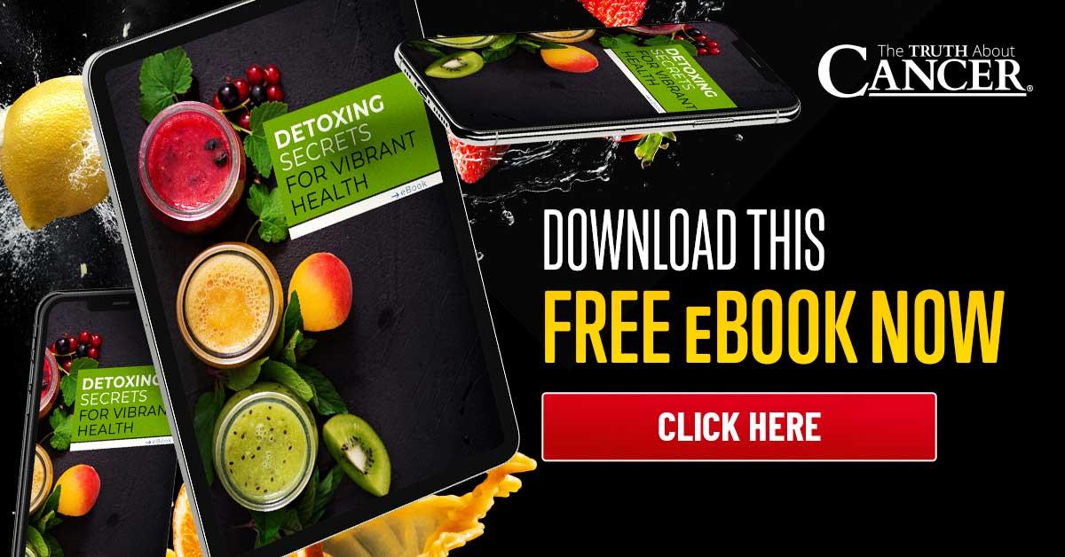 detox secrets ebook