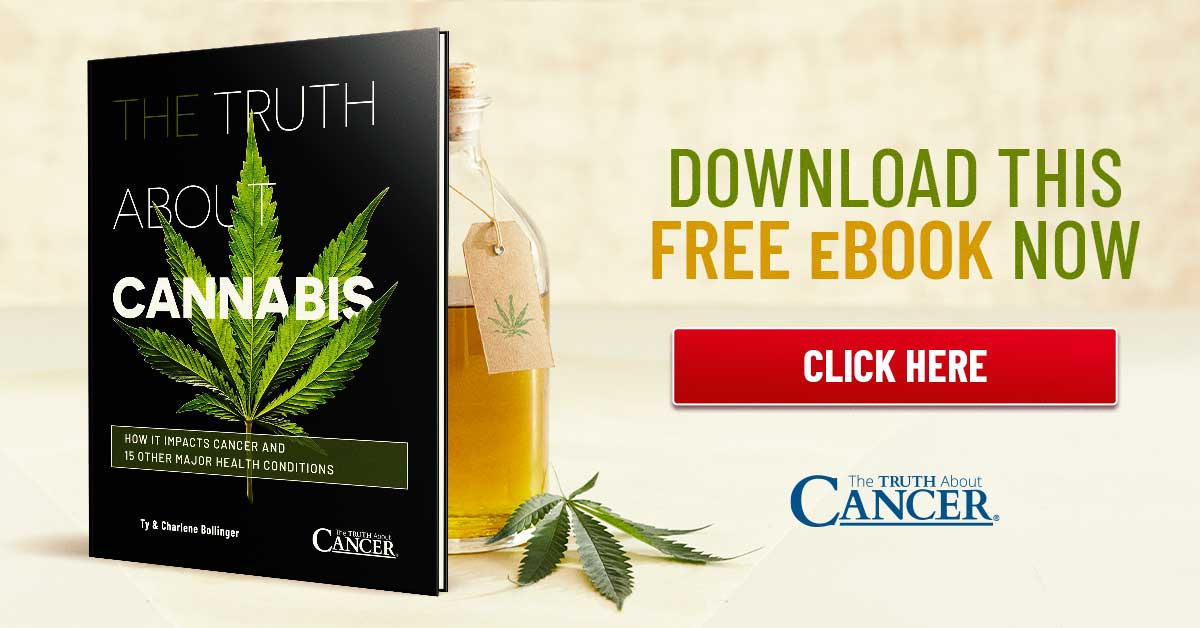 The truth about cannabis ebook