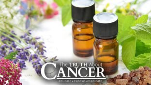 5 Cancer-Fighting Essential Oils & 5 Ways to Use Them