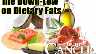 The Down-Low on Dietary Fats: Are You Getting Enough of the Right Ones?