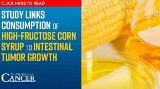 Study links consumption of high-fructose corn syrup to intestinal tumor growth