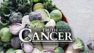 How Kale and Cruciferous Plants Help Prevent Colon Cancer