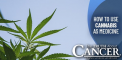 How to Use Cannabis as Medicine