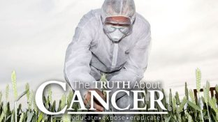 USDA — Not Pesticide Companies — Should Regulate GMOs, Lawsuit Says