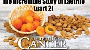 The Incredible Story of Laetrile Part II: What Government Agencies and Big Pharma Don't Want You to Know