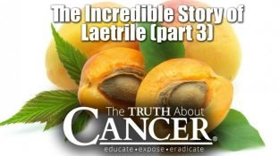 The Incredible Story of Laetrile Part III: A Cancer Cure Cover-Up? The Conclusion
