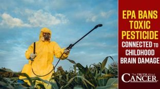 EPA Bans Toxic Pesticide Connected to Childhood Brain Damage