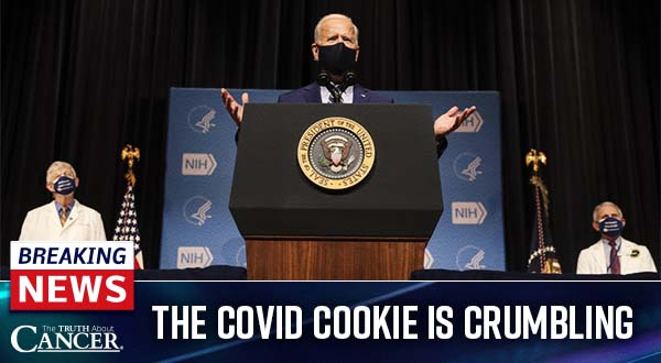 COVID Cookie is Crumbling