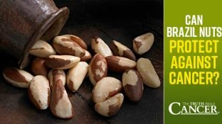 Can Brazil Nuts Protect Against Cancer?