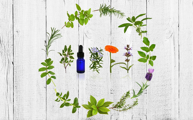 The Top Five Essential Oil Pairs for Gut Health