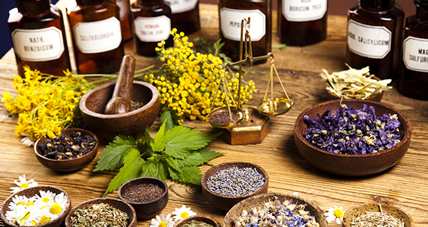 The War on Alternative Medicine by Ty Bollinger