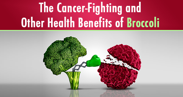 The Cancer-Fighting and Other Health Benefits of Broccoli